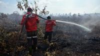 Petugas memadamkan kebakaran lahan di Pulau Rupat, Kabupaten Bengkalis, beberapa waktu lalu. (Liputan6.com/M Syukur)