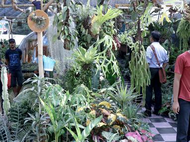 Pengunjung melihat-lihat tanaman yang dijual dalam pameran Flora dan Fauna 2018 di Taman Lapangan Banteng, Jakarta, Selasa (21/7). Pameran berlangsung mulai 10 Agustus hingga 10 September 2018. (Liputan6.com/Immanuel Antonius)