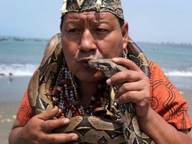 Seorang dukun Peru mencium ular selama ritual untuk menyambut tahun baru  di pantai Agua Dulce, Lima, Kamis (27/12). Ritual dimaksudkan untuk membawa kekuatan dan energi ke seluruh dunia sehingga ada kedamaian dan ketenangan. (AP/Martin Mejia)
