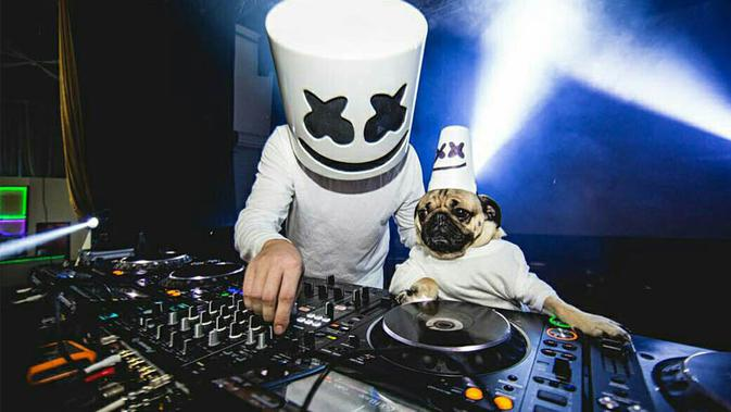DJ Marshmellow (Piterest)