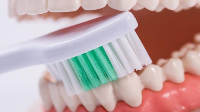 Menggosok Gigi dengan Gerakan yang Kasar