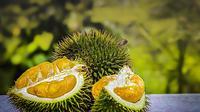 Ilustrasi durian. (dok. pixabay.com/Asnida Riani)