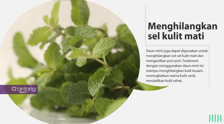 Daun mint untuk perawatan kulit wajah. (Sumber foto: Daniel Kampua/Bintang.com, Digital Imaging: Nurman Abdul Hakim/Bintang.com)