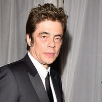 Benicio Del Toro. Foto: Variety