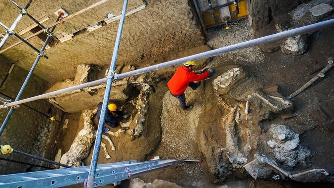 Istal atau kandang kuda, sedang digali oleh para arkeolog. (Cesare Abbate / AP)