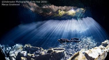 Hasil Jepretan Memukau Fotografi Bawah Air Terbaik 2019