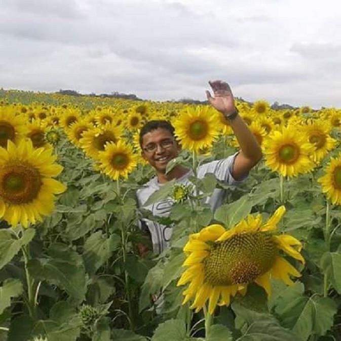 Mengunjungi Padang Bunga Matahari di Lopburi, Thailand (Liputan6.com / Harun Mahbub)