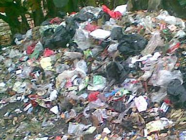 Citizen6, Jakarta Timur: Bertahun-tahun tinggal di Kelurahan Pulogebang, Cakung, Jakarta Timur, harus terus bersabar. Karena sebagian besar masyarakat sekitar membuang sampahnya di sini. (Pengirim: Himawan Sutanto)