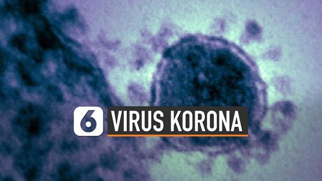 Penyebaran virus corona dari Wuhan mengundang reaksi dari dunia penerbangan.