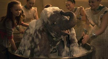 Kisah Dumbo Si Gajah Terbang