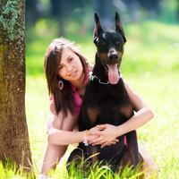 ilustrasi anjing/copyright Shutterstock
