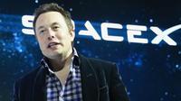 Elon Musk (AFP)