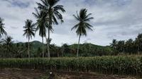 Indonesia bagian selatan mengalami kemarau, sedangkan wilayah ekuator masih berpotensi curah hujan tinggi.