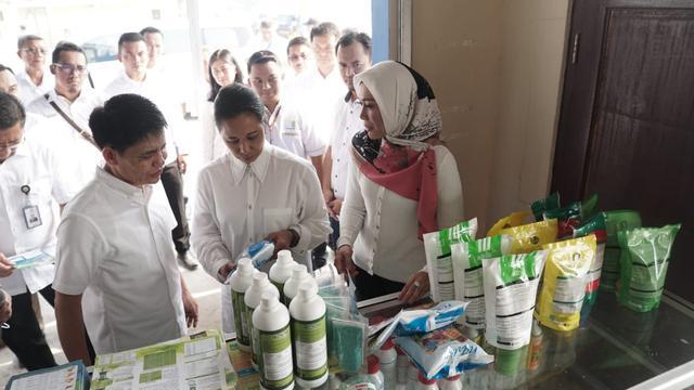 Menteri BUMN Rini Soemarno meninjau Rice Miling Unit (RMU) atau tempat penggilingan padi di Kecamatan Rawamerta, Karawang. Dok BUMN