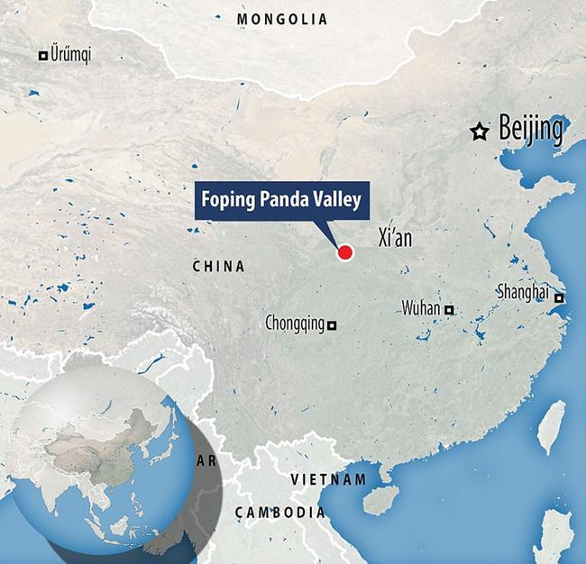 Peta dimana Qizai dirawat dan mendapatkan perlindungan | Photo: Copyright boredpanda.com