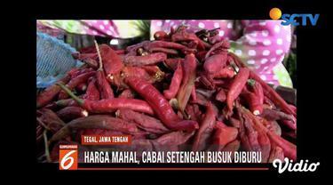 Mahalnya harga cabai, membuat cabai setengah busuk atau biasa disebut cabai sortiran, diburu konsumen di Kota Tegal, Jawa Tengah.