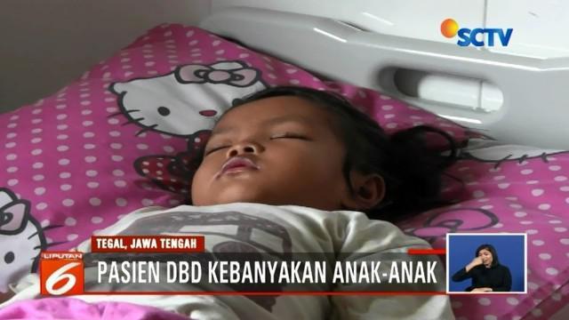 Masuki puncak musim hujan, waspada penyakit DBD dengan menjaga kebersihan lingkungan. Di Cimahi dan Tegal, rumah sakit setempat penuh oleh pasien penderita demam berdarah.