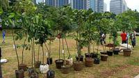 Selain menanam pohon di area Gelora Bung Karno (GBK), PDIP juga menebar benih ikan di Waduk Rawa Lindung, Jakarta Selatan. (Foto:Liputan6/Delvira Hutabarat)