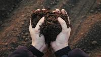 Cara membuat pupuk organik (Sumber: iStockphoto)