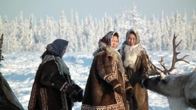 Ngeri, Ini 7 Fenomena yang Bakal Terjadi Kalau Kutub Mencair