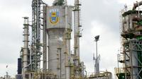 PT Pupuk Indonesia (Persero) merupakan produsen pupuk terbesar di Asia. (Dok Pupuk Indonesia)