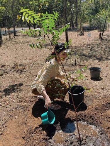 Tambah Usia, Puteri Indonesia Lingkungan 2020 Adopsi Pohon Mimba