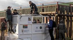 Dokter hewan dan petugas bersiap memindahkan badak hitam dari Taman Nasional Afrika ke Taman Nasional Zakouma di negara Chad, Afrika Selatan (1/5). (AFP/Cianluigi Guercia)