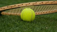 (Foto: Pixabay) Ilustrasi bola tenis.