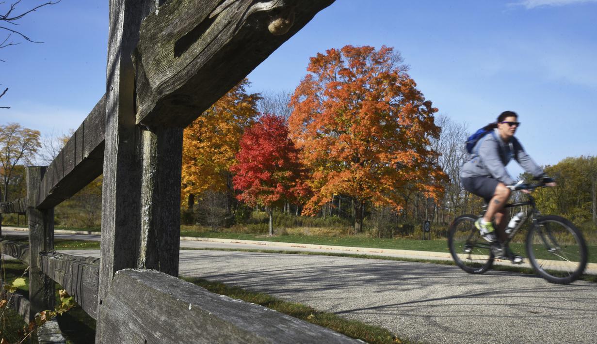 Seorang pengendara sepeda melewati deretan pohon berwarna-warni di Hutan Lindung Lakewood dekat Wauconda, Illinois, Amerika Serikat, 13 Oktoer 2020. (Paul Valade/Daily Herald via AP)
