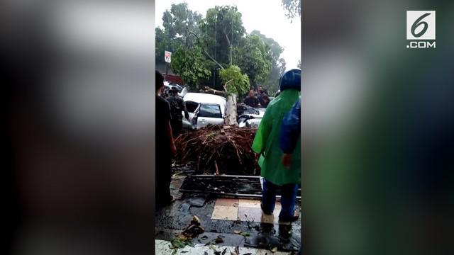 Seorang pengendara mobil Toyota Avanza, Enny Reno, tewas setelah tertimpa pohon tumbang saat hujan deras disertai angin puting beliung di kawasan Batu Tulis, Kota Bogor.