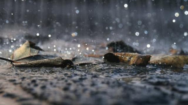 50 Kata Mutiara Tentang Hujan Yang Lucu Dan Bikin Baper Hot Liputan6 Com