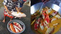 Aksi Warganet Masak Ikan Koi Dibumbu Gulai Ini Bikin Elus Dada (Sumber: Twitter/@yowessory)