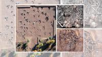 Penemuan sebuah rumah yang berusia 5.000 tahun di Cina, telah memberikan arkeolog pemandangan yang sangat mengerikan.