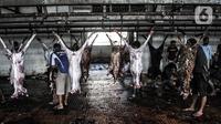 Petugas menguliti hewan kurban Idul Adha di RPH Pulogadung, Jakarta, Jumat (31/7/2020). RPH Pulogadung menyembelih 50 sapi dan puluhan kambing dengan proses pemotongan sesuai syariat Islam dan protokol kesehatan guna mencegah penyebaran COVID-19. (merdeka.com/Iqbal S. Nugroho)