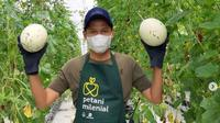 Pertanian infus yang dikembangkan Gubernur Jawa Barat Ridwan Kamil mulai panen dan hasilnya diekspor (dok.instagram/@ridwankamil/https://www.instagram.com/p/CPViucRnVLZ/Komarudin)