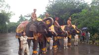 Tak hanya berdiri tegak, para gajah asal Sumatera juga ikut menghormat pada Sang Merah Putih. (Dewi Divianta)