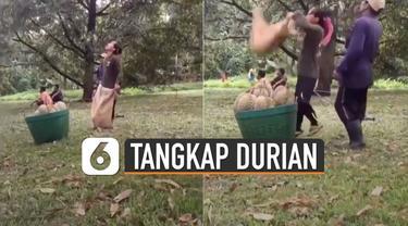 Warganet dibuat deg-degan lantaran caranya menangkap durian yang dijatuhkan.
