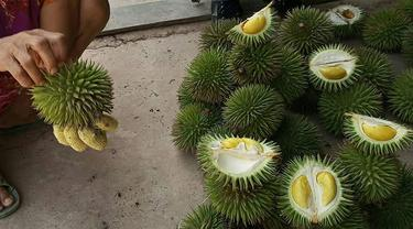 Durian Kertongan