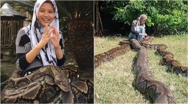 Viral Gadis Pelihara 6 Ular Phtyon Sekaligus, Bikin Geleng Kepala