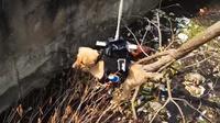 Seekor anjing yang ada di selokan berhasil diselamatkan dengan drone (Sumber: Channel YouTube Milind Raj)