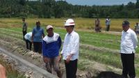 Presiden Jokowi berbincang dengan para pekerja  saluran irigasi di Pulau Seram. (Hanz Jimenez Salim/Liputan6.com)