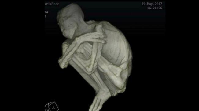 Pemindaian CT pada temuan mumi humanoid berjari 3 di Peru. (Sumber YouTube/Gaia)