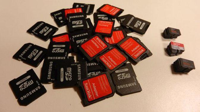 Meski belum optimal, tidak ada salahnya untuk mempersiapkan diri kamu dengan membeli sebuah MicroSD. (Sumber: Nintendo Life)