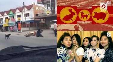 Video Hit hati ini datang dari rekaman bocah yang ditabrak motor saat bermain bola di jalan, ramalan shio paling beruntung, dan artis yang sindir sosialita.