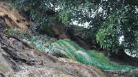Tebing pelangi Jalur Treking hutan hungayono (Arfandi Ibrahim/Liputan6.com)
