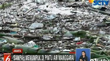 Sampah-sampah ini terbawa arus melalui luapan Sungai Ciliwung setelah hujan deras yang mengguyur kawasan hulunya di Bogor.