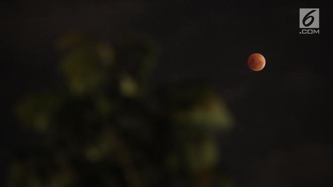 Foto Mengamati Proses Terjadinya Gerhana Bulan Di Langit Jakarta News Liputan