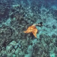 Tips diving ala Marischka Prudence. (marischkaprue/Instagram)