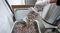 Mengintip Proses Pembuatan Premium Menggunakan Biji Kakao dari Empat Daerah di Indonesia di Pipiltin Cocoa, Kawasan Barito, Jakarta Selatan pada Kamis, 13 September 2018 (Liputan6.com/Hermann Zakharia)