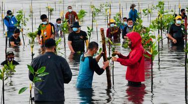 Presiden Jokowi menanam mangrove bersama masyarakat di Pantai Setokok Kecamatan Bulang, Kota Batam, Kepulauan Riau, Selasa (28/9/2021).